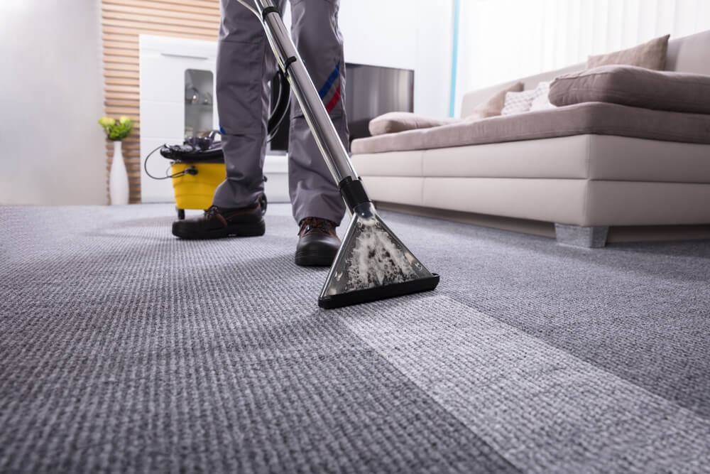 how much carpet cleaning cost