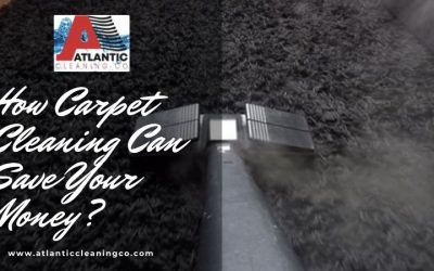 How Carpet Cleaning Can Save Your Money?
