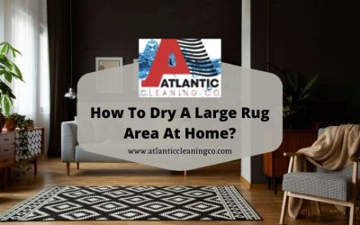 How To Dry A Large Rug Area At Home?