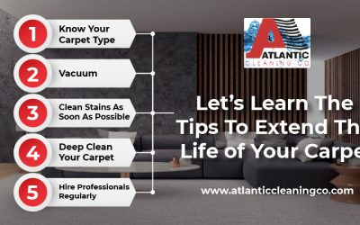 Let's Learn The Tips To Extend The Life of Your Carpet