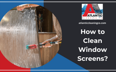 How to Clean Window Screens?